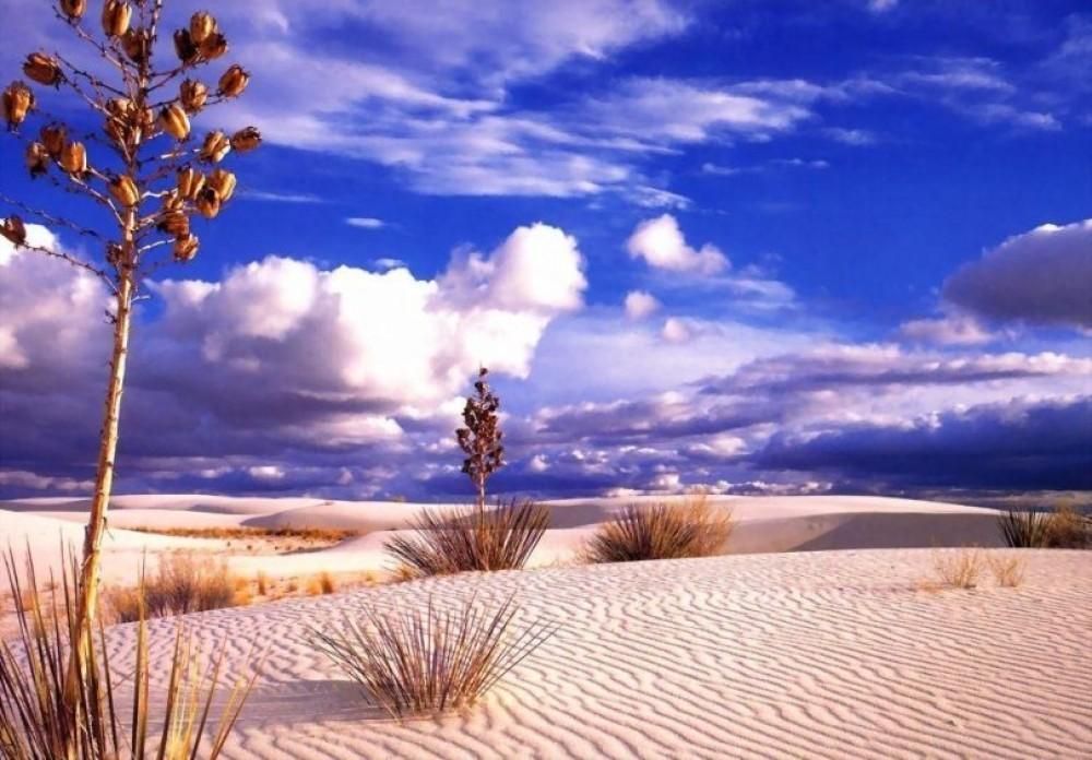 چطور به کویر و بیابان سفر کنیم؟