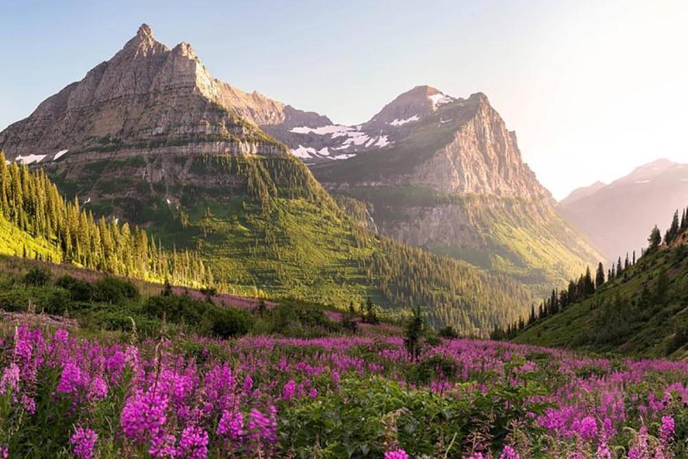 کوه ها چگونه به وجود آمده اند و انواع آن ها کدامند؟