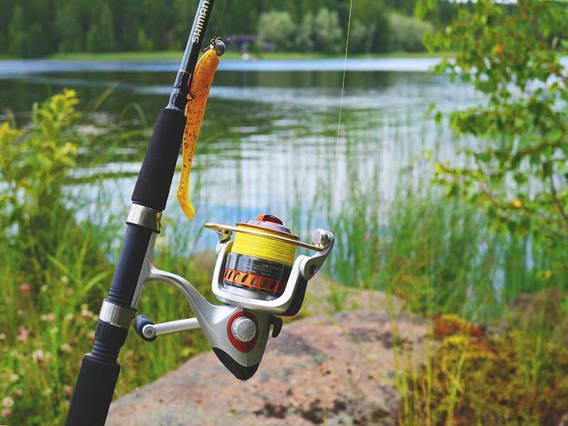 تجهیزات ماهیگیری - چرخ ماهیگیری
