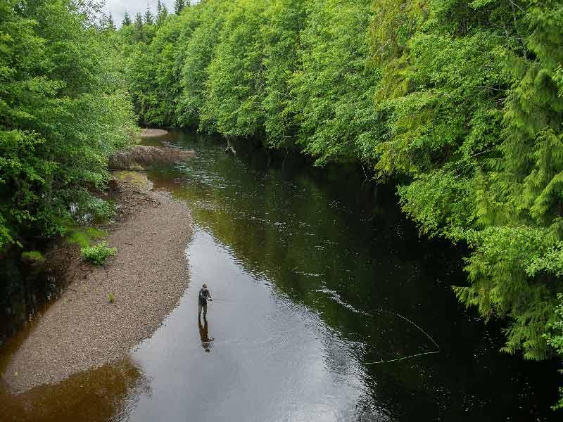 ماهیگیری در آب های تازه - Freshwater fishing