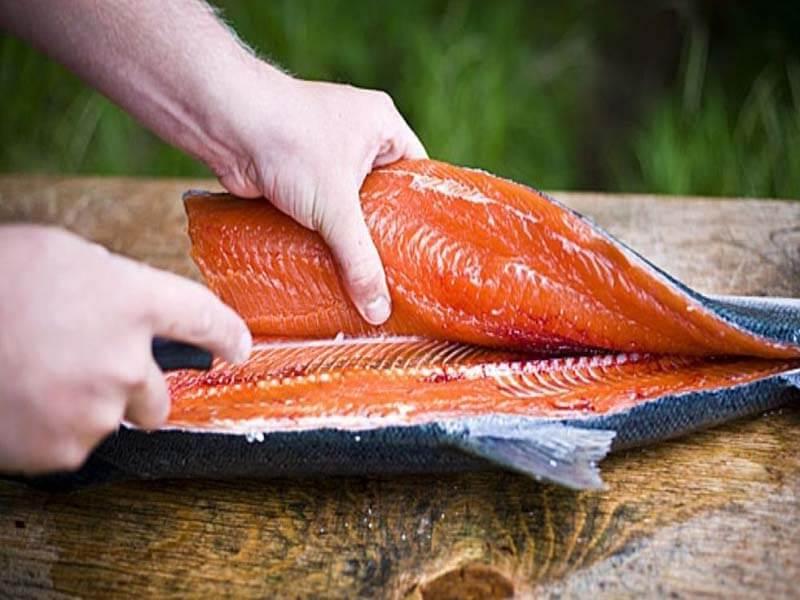 فیله کردن ماهی