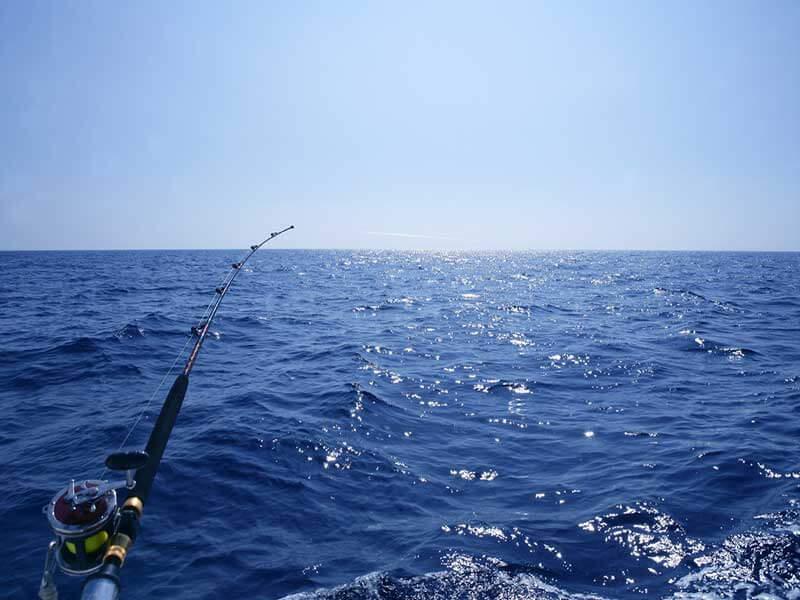 ماهیگیری در آب های شور - saltwater fishing