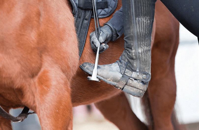 نحوه سوار شدن بر روی اسب در آموزش اسب سواری